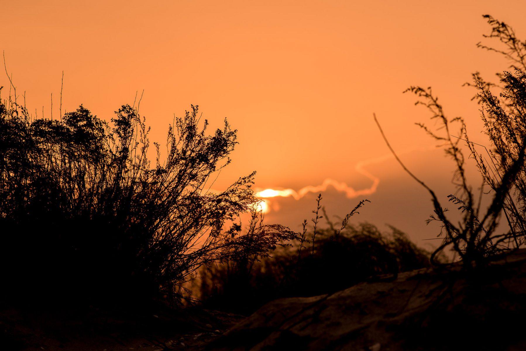 sunset on a beach photo shoot